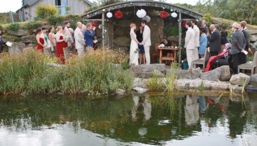 Under the arbour a summer wedding