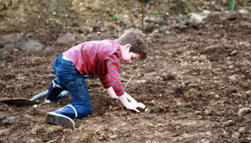 Planting trees for all ages