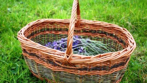 hand made basket and lavender